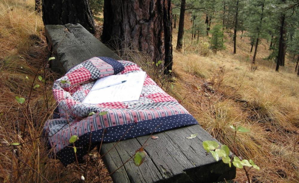 Written in the Woods