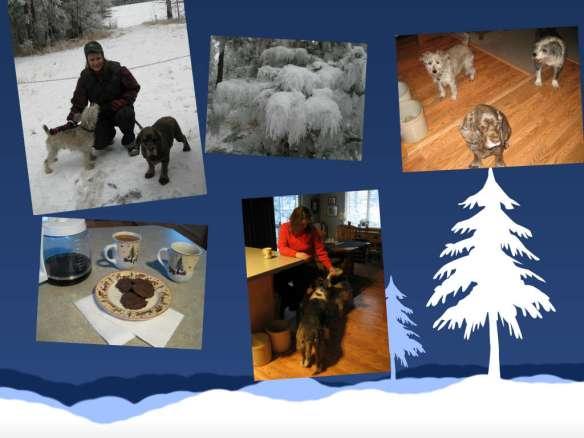 Blog collage Jan 2014