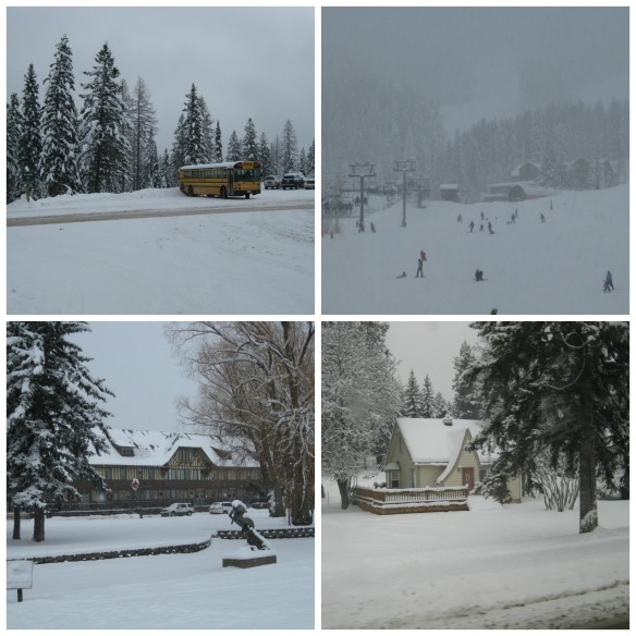Whitefish Collage